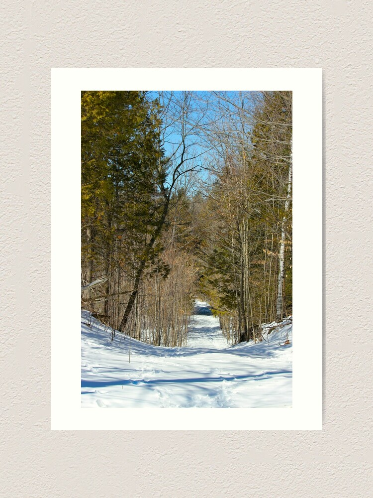Alternate view of March Path Art Print