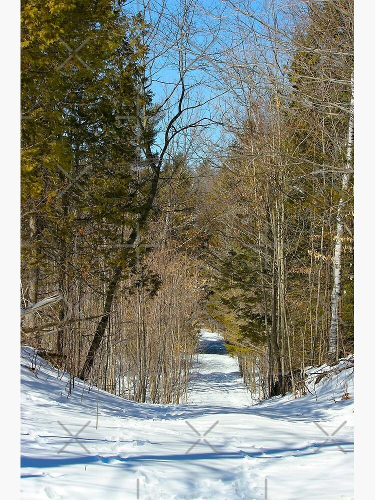 March Path by debfaraday