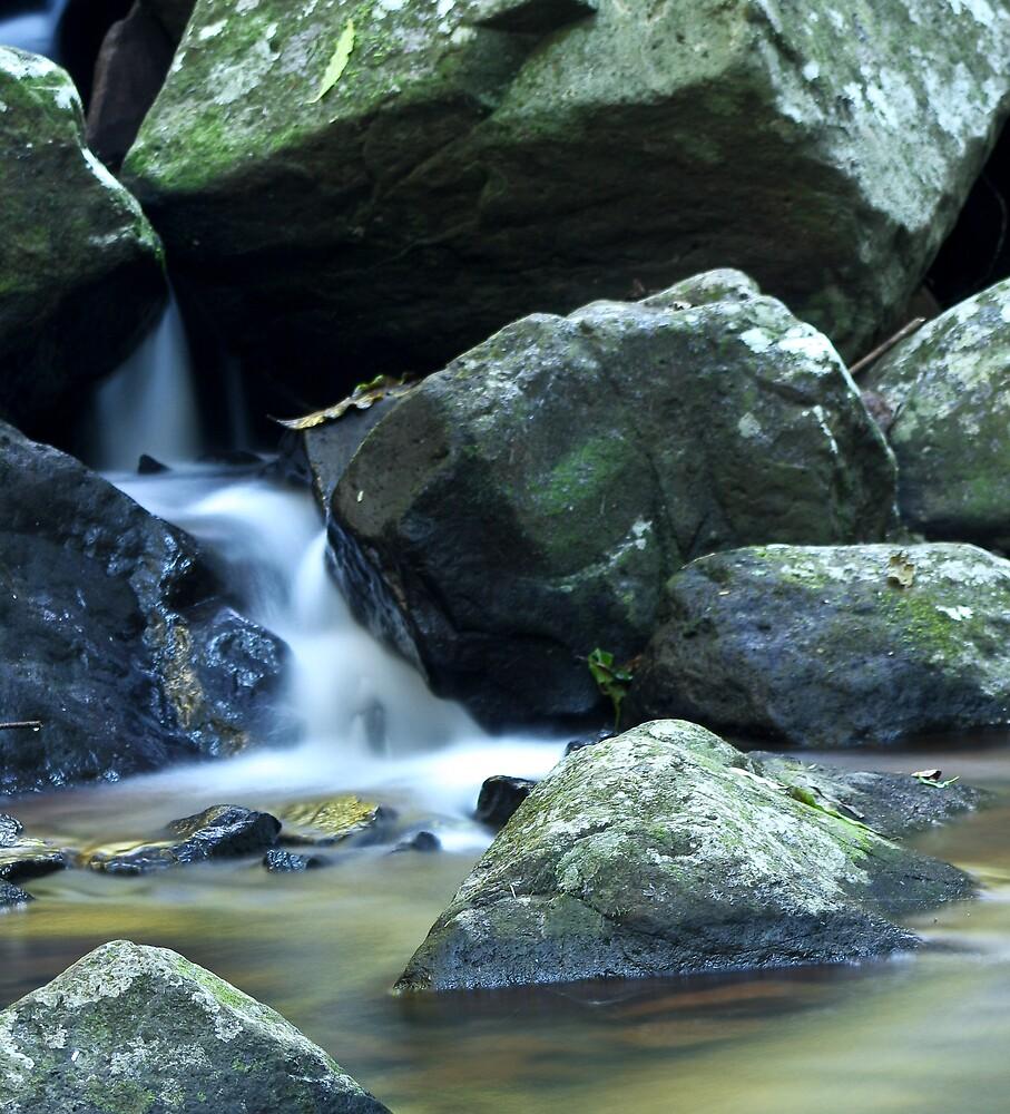 Tamborine river 2 by Craig Kasper Photography