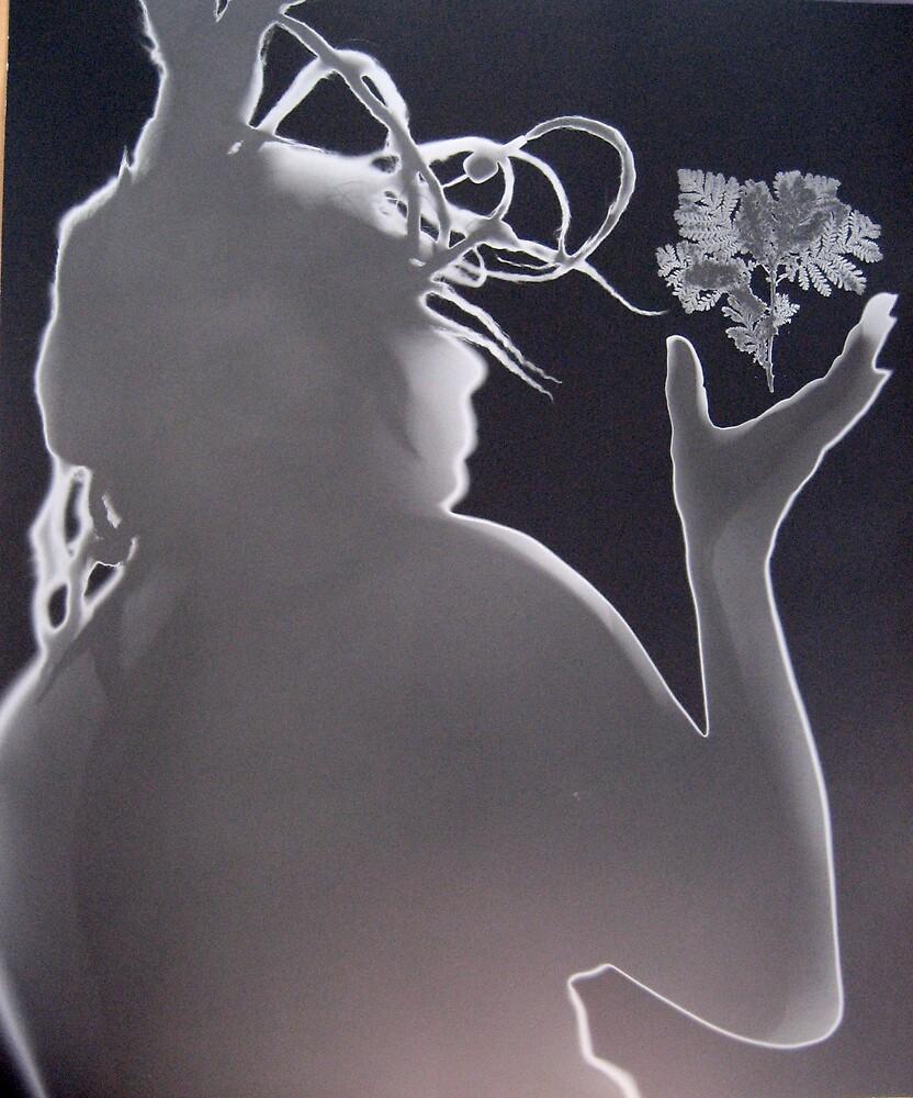 Untitled by adrienne bolsega