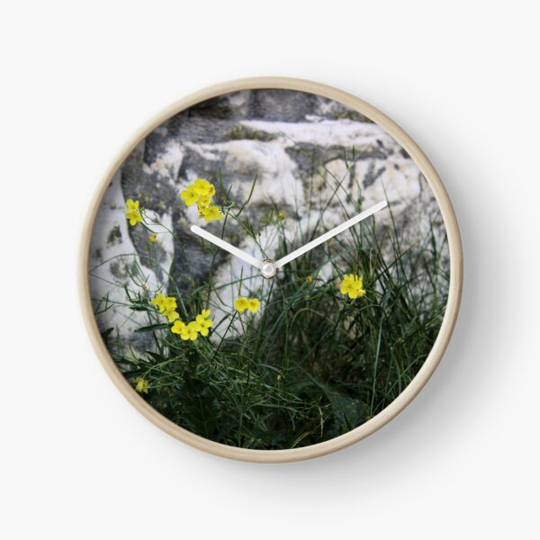 Yellow flowers against white cliffs Clock