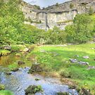 The Cliffs Of Malham Cove 2 by Colin  Williams Photography