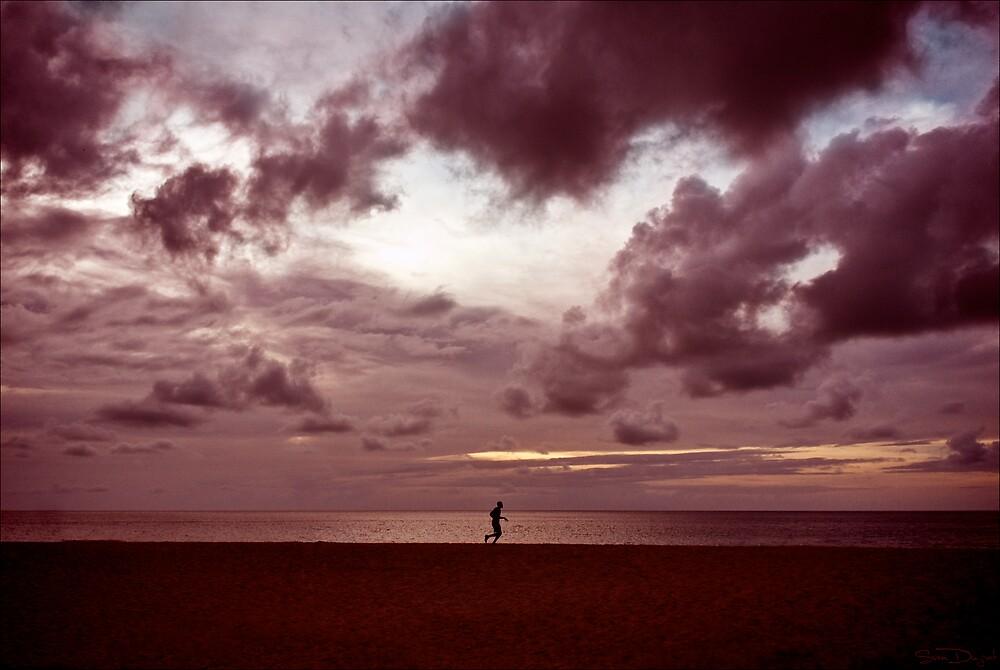 Twilight runner by Sven Duzont