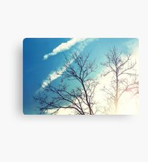 Images of Light Metal Print