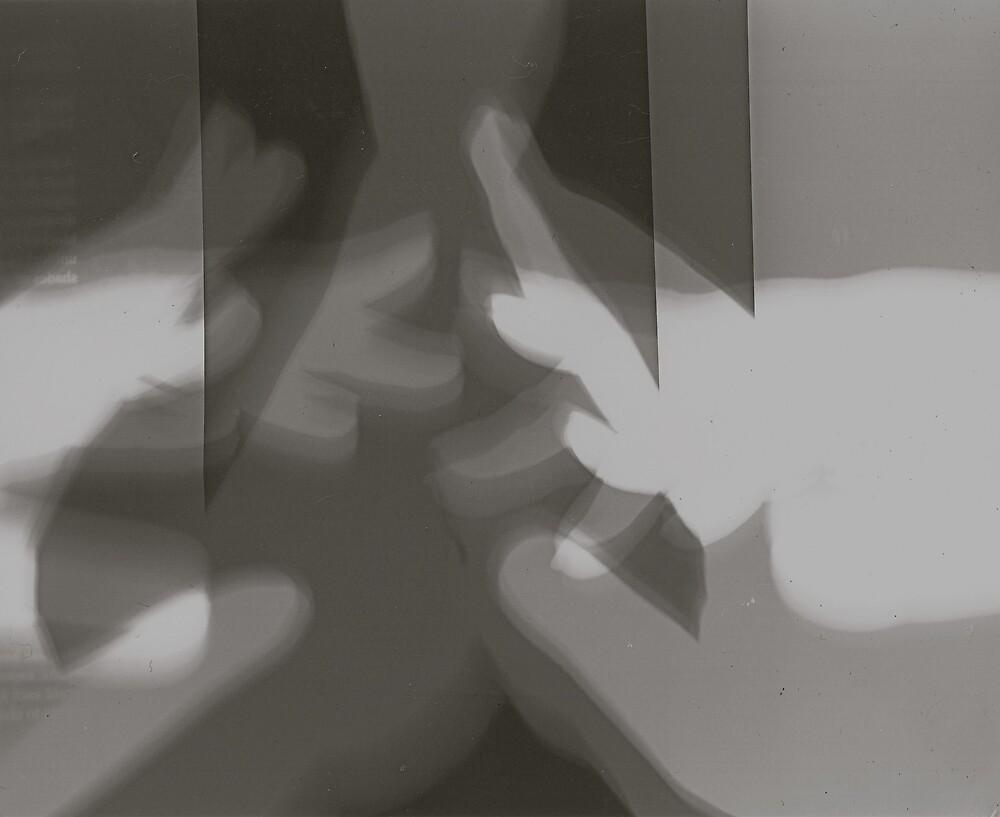 Hand Photogram 2 by nategan