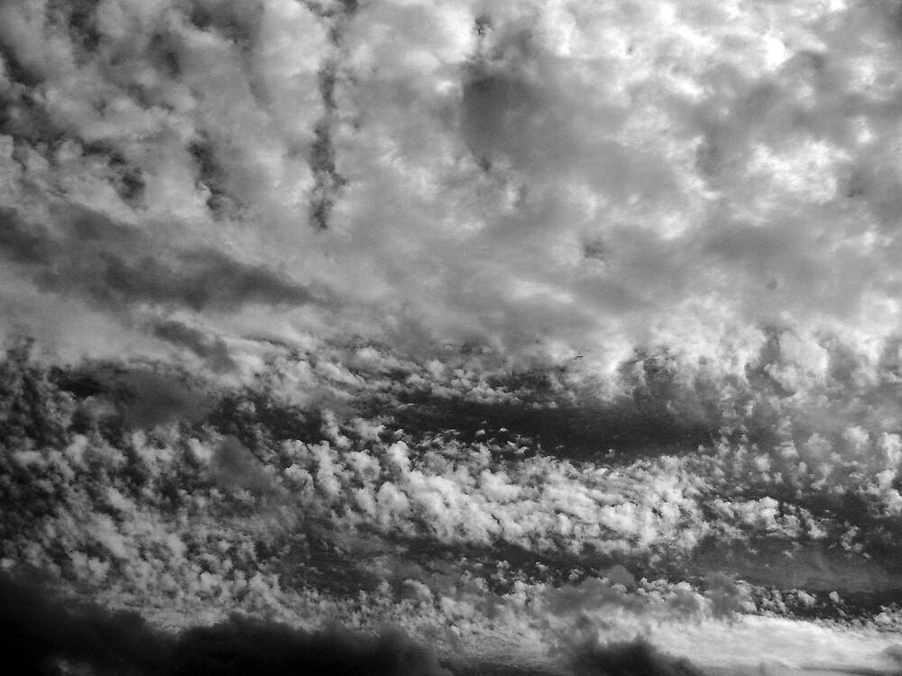 Cloud Tapestry by Timothy Wilkendorf