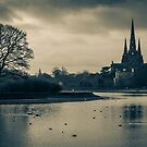 Lichfield cathedral winter reflection. by Fletch147