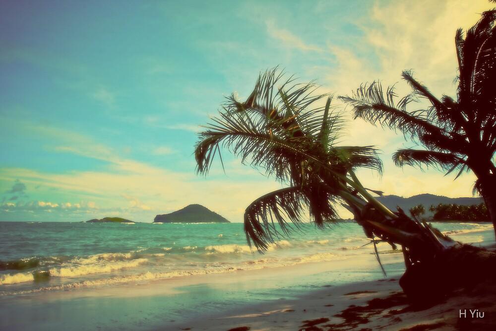 Paradise by H Yiu