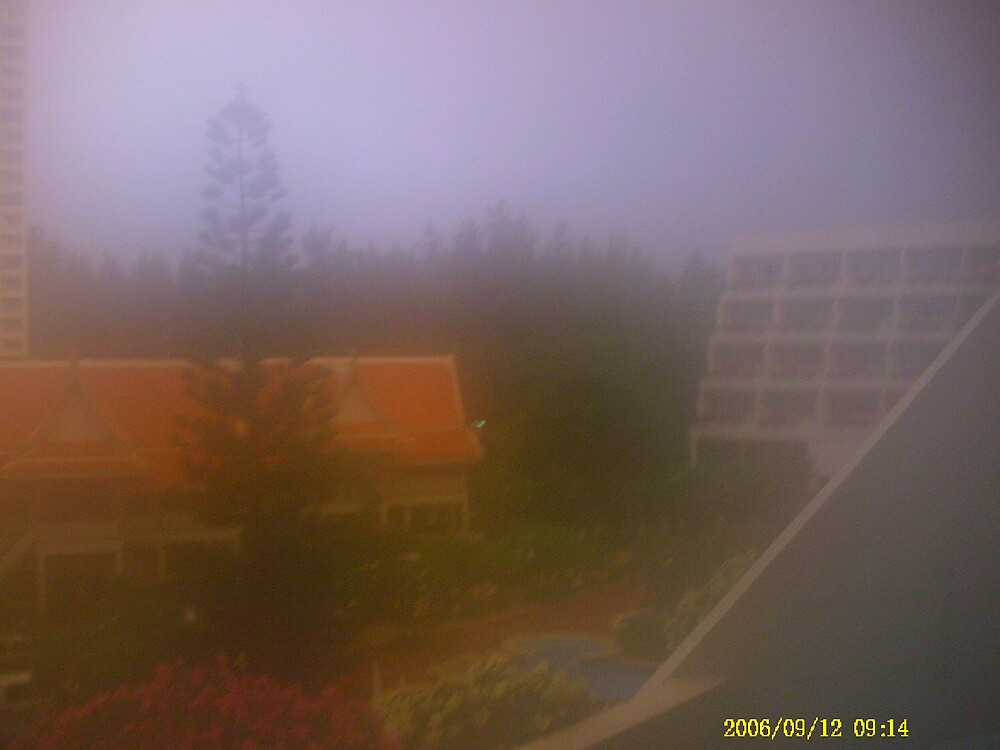 Heat Fog by rozmitchell