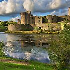 Caerphilly Castle Moat by IanWL