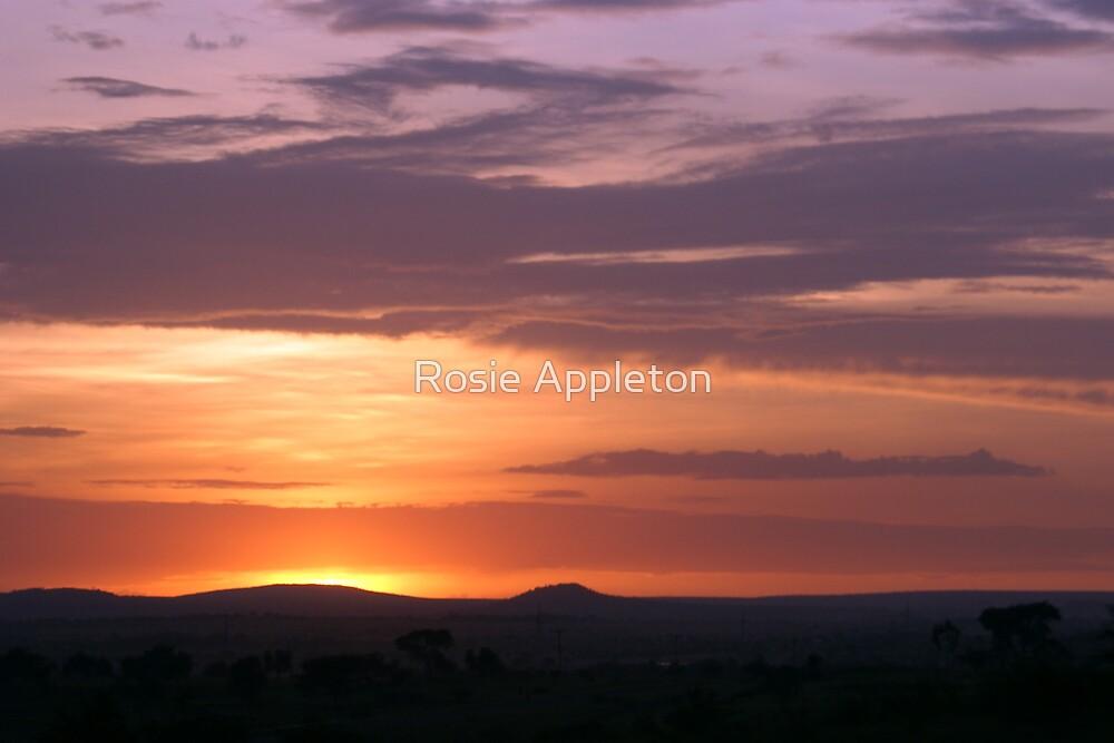 Tanzanian sunset  by Rosie Appleton