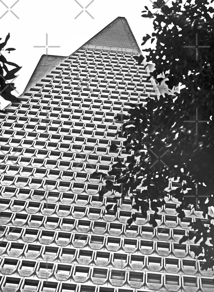 Urban Living in San Francisco - TransAmerica Pyramid by Buckwhite