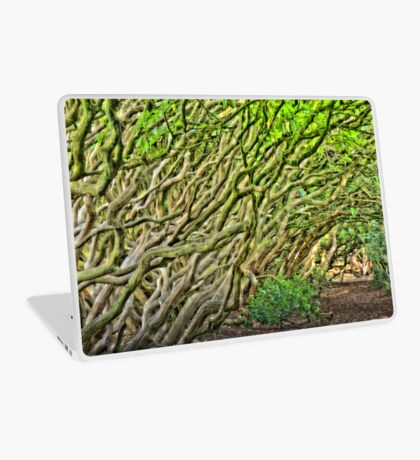 Fairy Tale Forest Laptop Skin