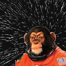 monkey in space by FashionHayley