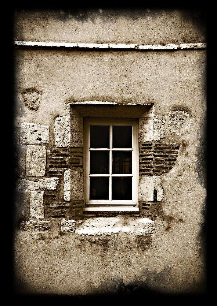 French Window by hazy