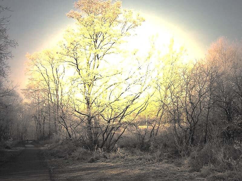 Morning light by alaskaman53
