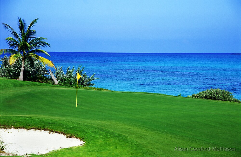 Golfer's Paradise by Alison Cornford-Matheson