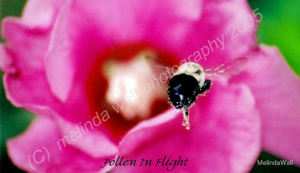 Pollen in flight... by MelindaWall