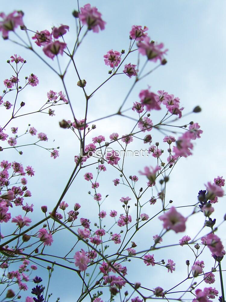 Flower Spray by Lois Bennett
