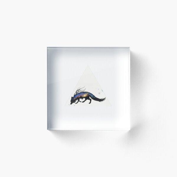 Auroa Australis Fox  Acrylic Block