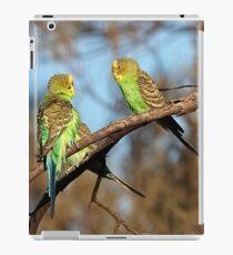 Wild and Free ~ Budgerigars iPad Case/Skin