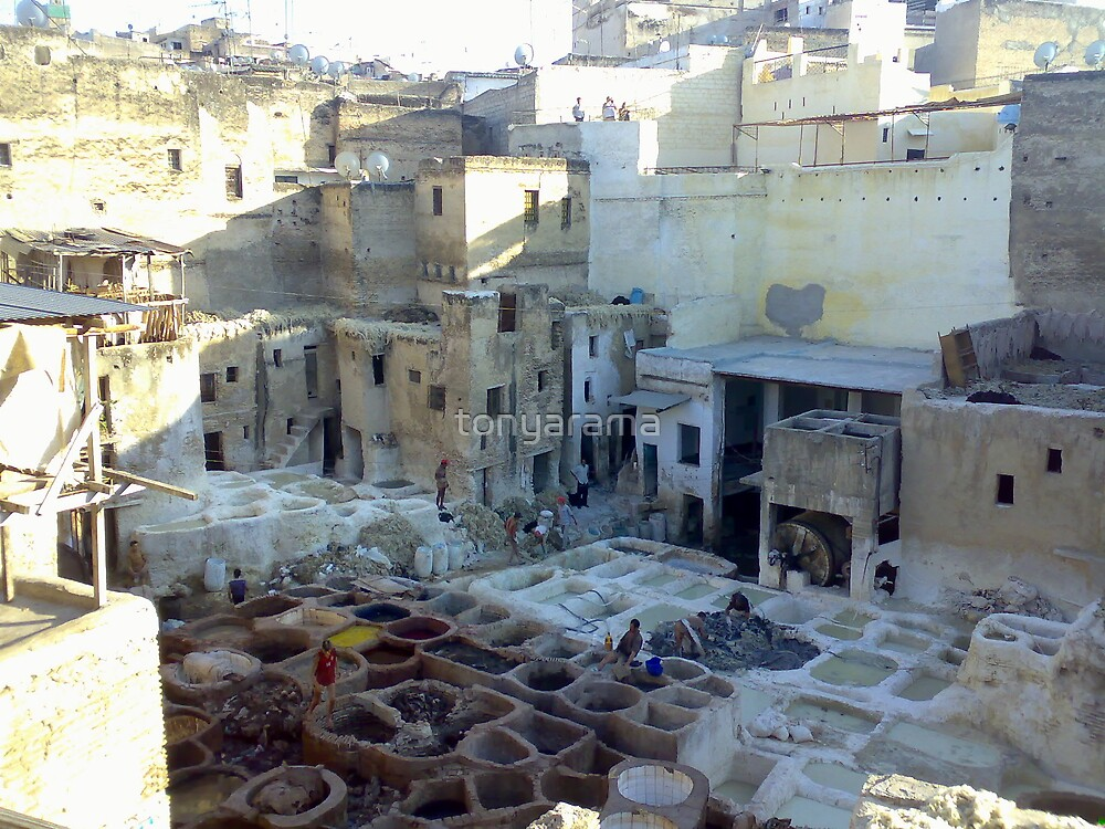 The tannery at Fes, Morocco by tonyarama