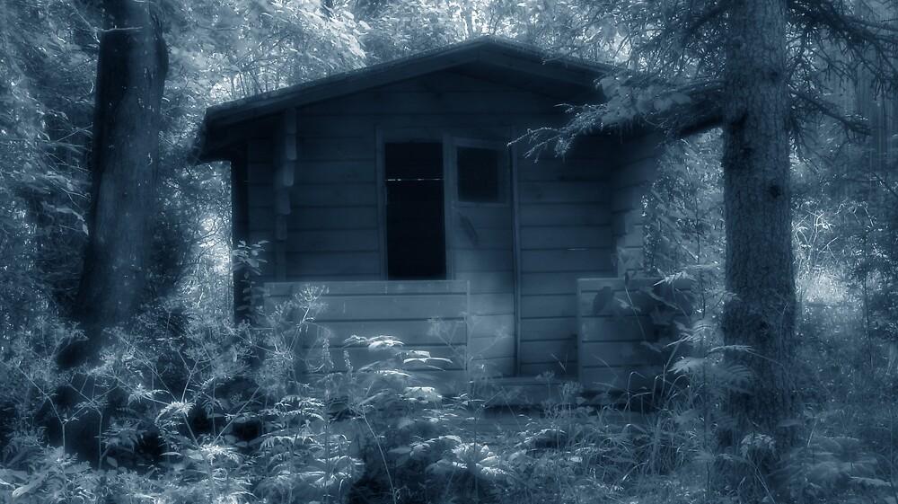 Ghostplay by Petri Volanen
