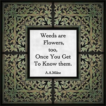 Weeds Quote by geegeetee11