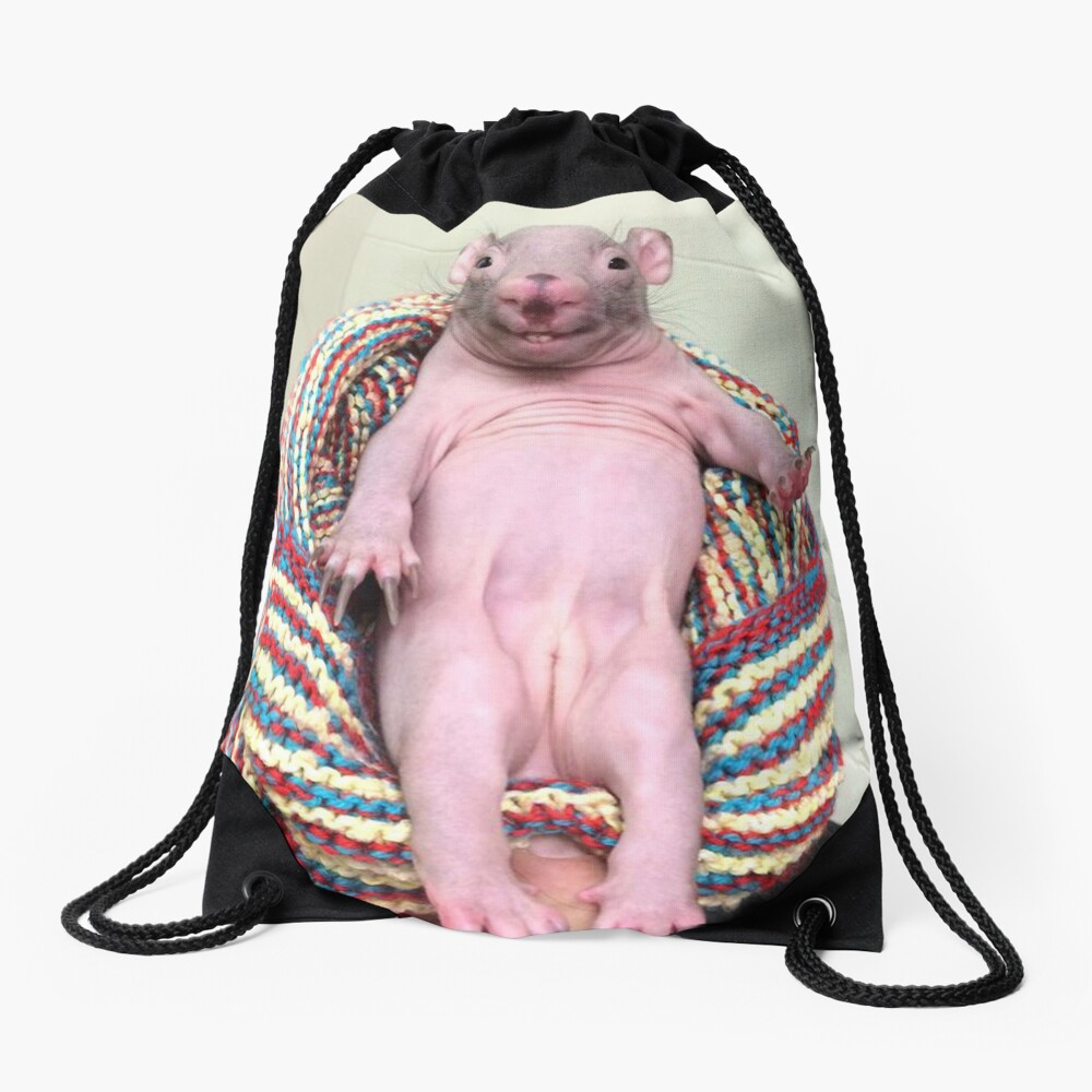 N is for Naked Mole rat Poster by thezoogirl   Redbubble