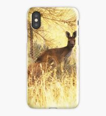 Heat of the Day iPhone Case/Skin