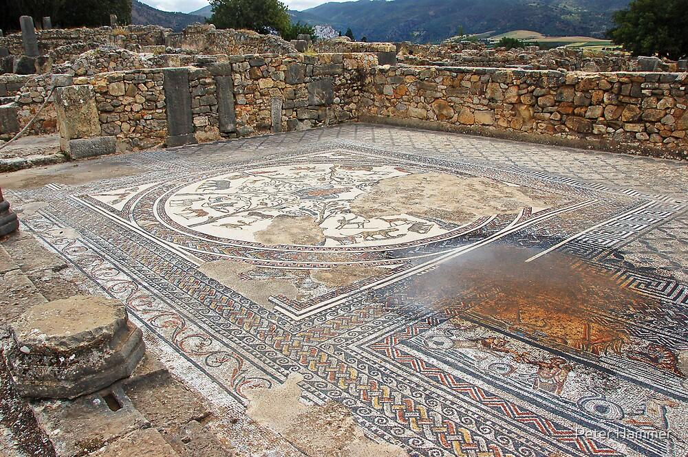 Roman mosaics by Peter Hammer