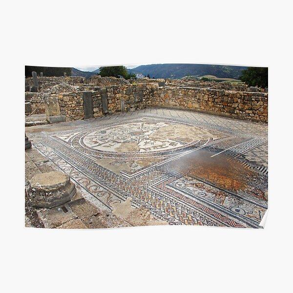 Roman mosaics Poster