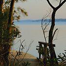 Towards Green Point - Valentine NSW by Bev Woodman