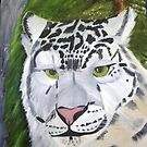 Snow Leopard by towncrier