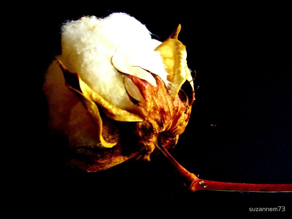100 % Cotton by suzannem73