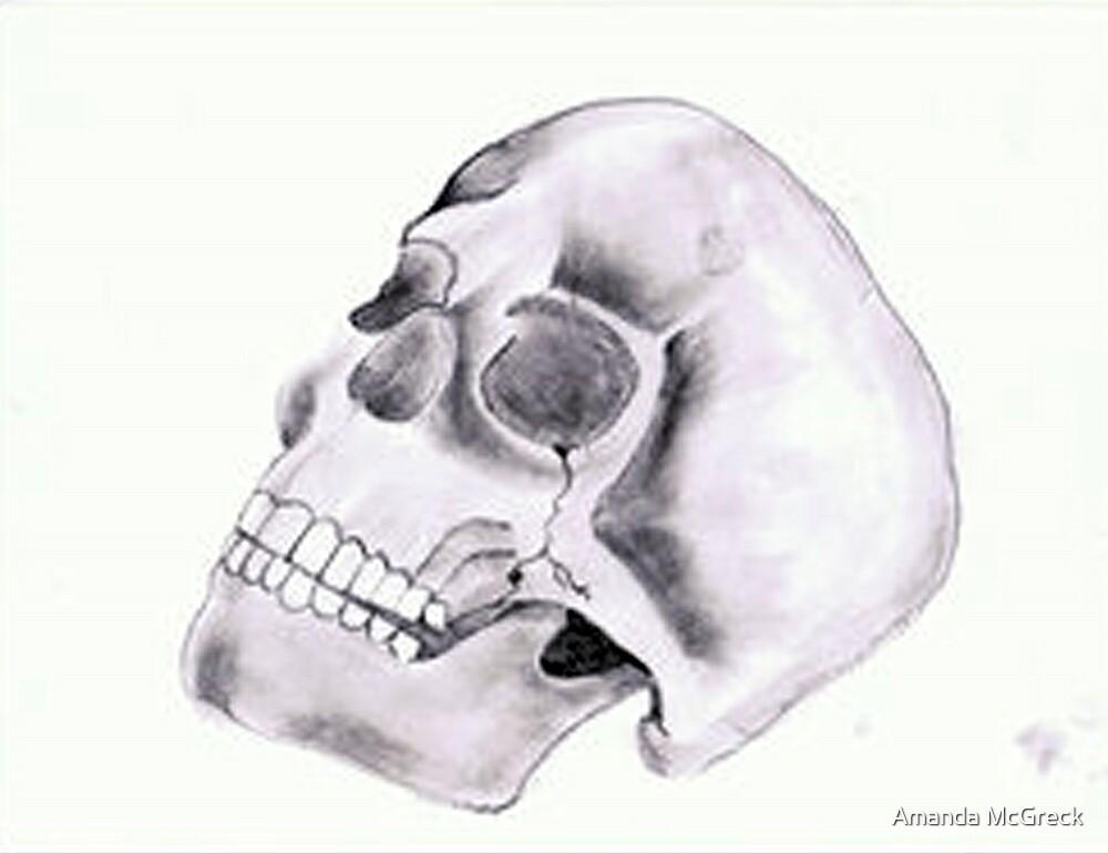 Skull Study by Amanda McGreck