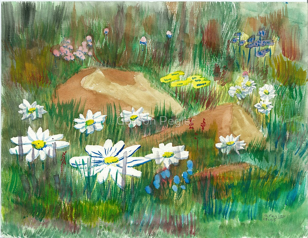 Wildflowers - Water Colors by Gordon Pegler