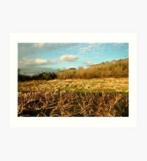 St. Catherine's Hill from Five Bridges Road Art Print