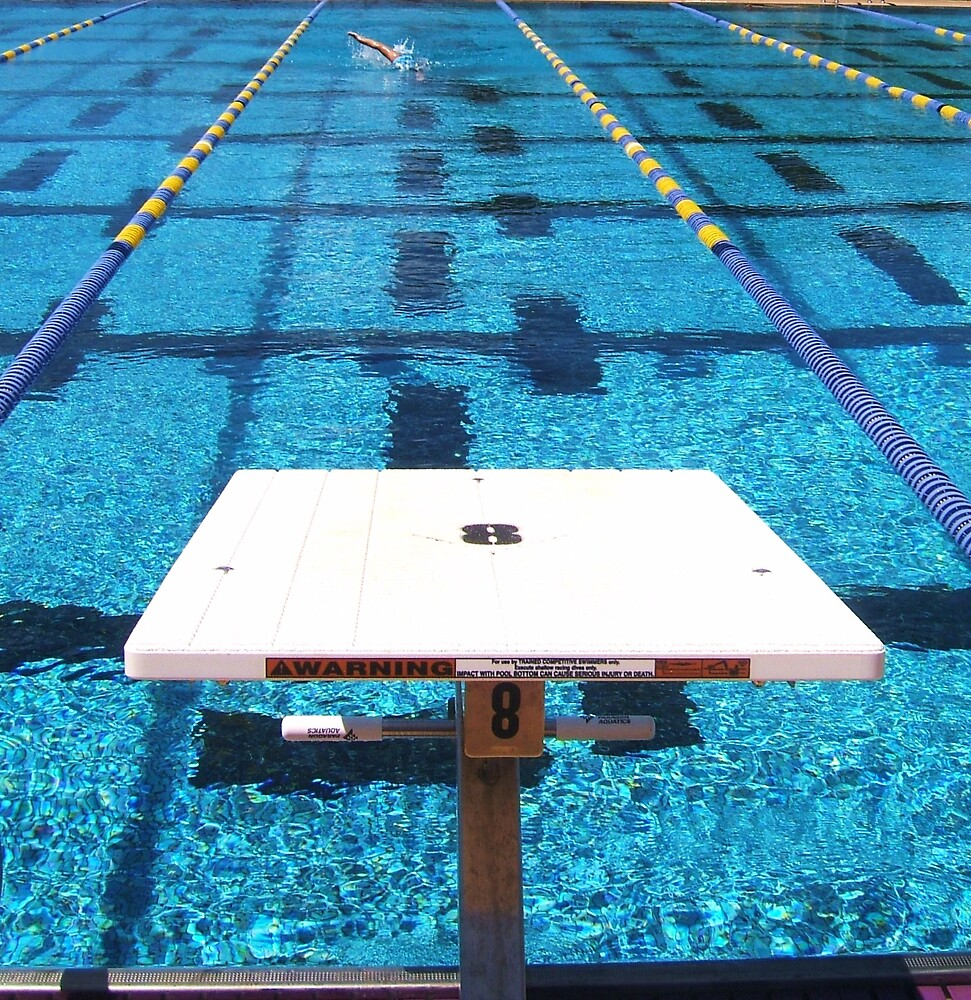 Swimming by Barbara Morrison