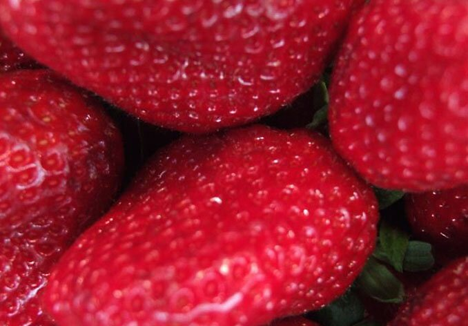 strawberry by Flavia Di segni