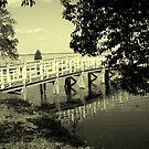 the bridge by dannielle