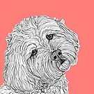 Cockapoo Dog Portrait by Adam Regester