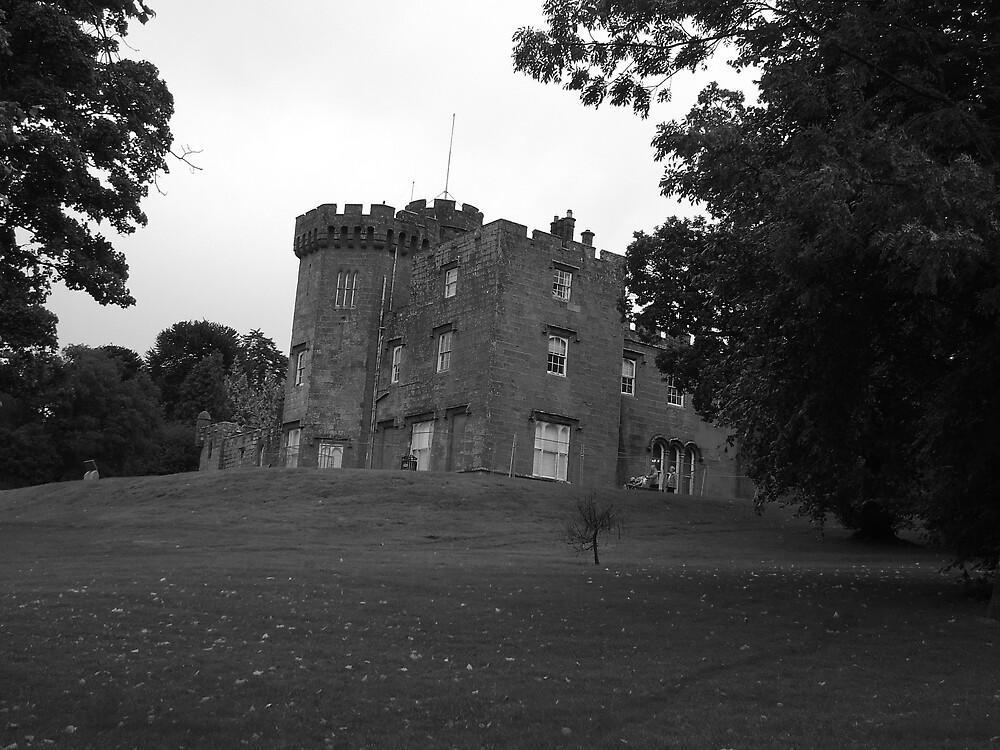 Balloch Castle by David Fulton