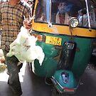 The Tuk Tuk Driver by Anita Revel
