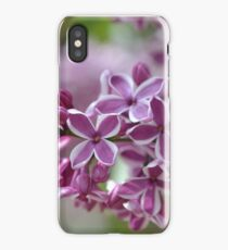 Two-Tone Lilacs iPhone Case