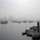 Misty Morning by Jan  Wall