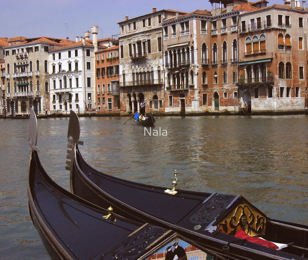 Venice3 by Nala