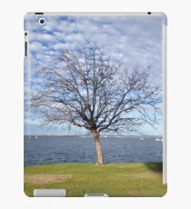 Tree with blue sky and clouds - Perth iPad Case/Skin