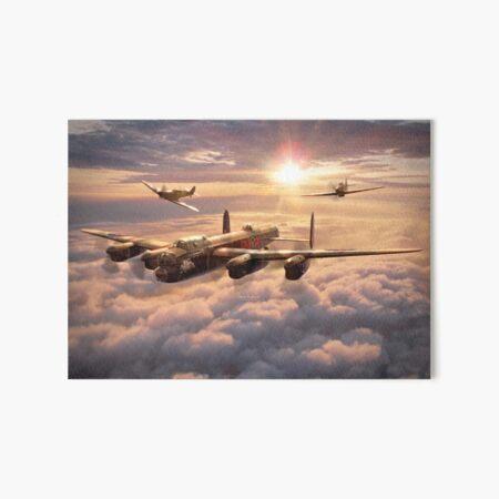Memorial Flight Art Board Print