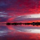 Collie River Sunrise by robcaddy